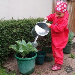 Creating a Vegetable Garden with Kids